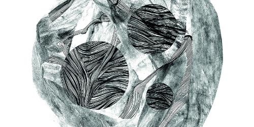 A természet geometriája